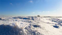 Winter-Impression
