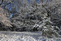 Winter Impressionen 2