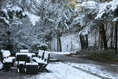 Winter Impressionen 3