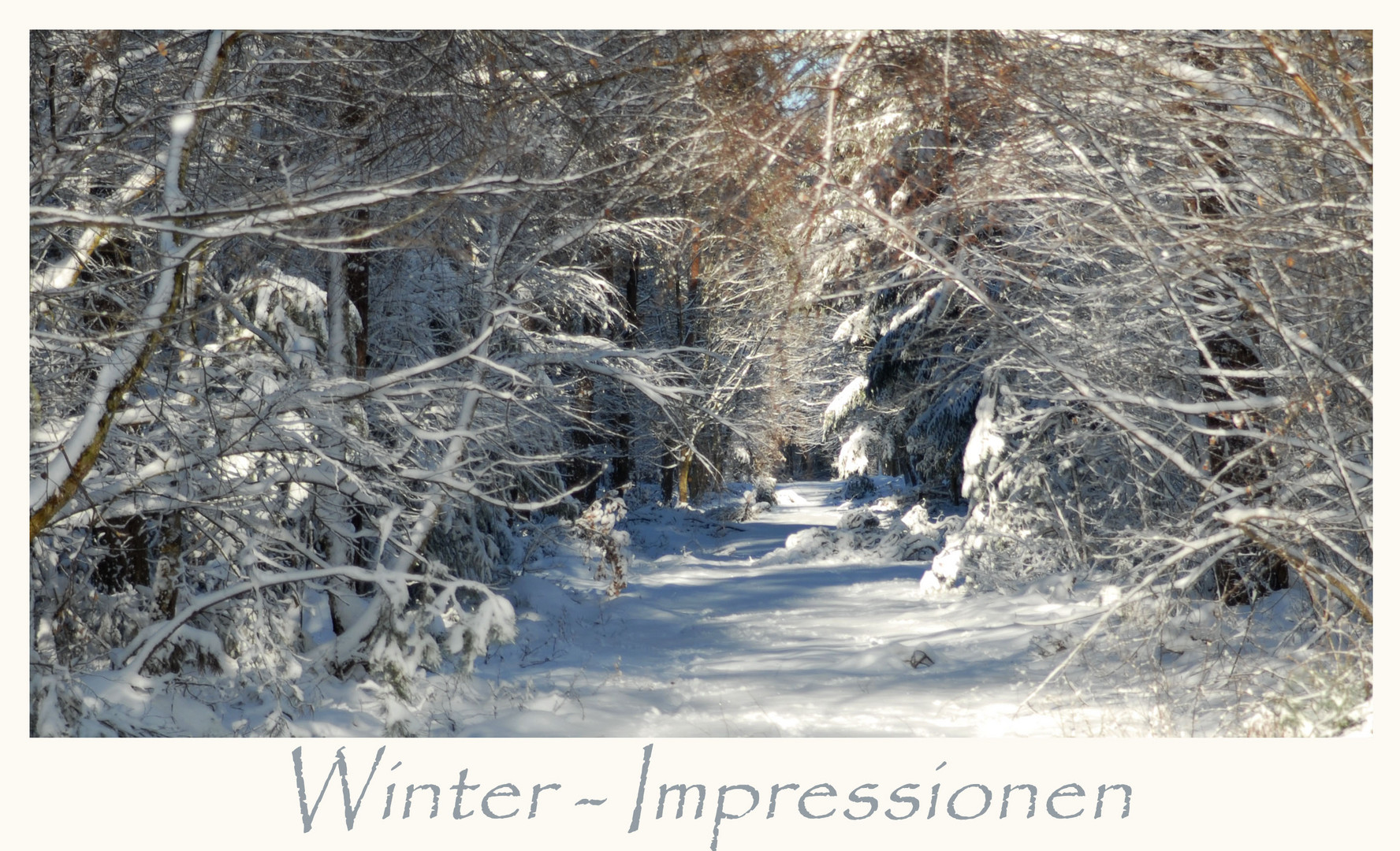 Winter - Impressionen