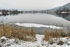 Winter - Impressionen  von dem See -1-