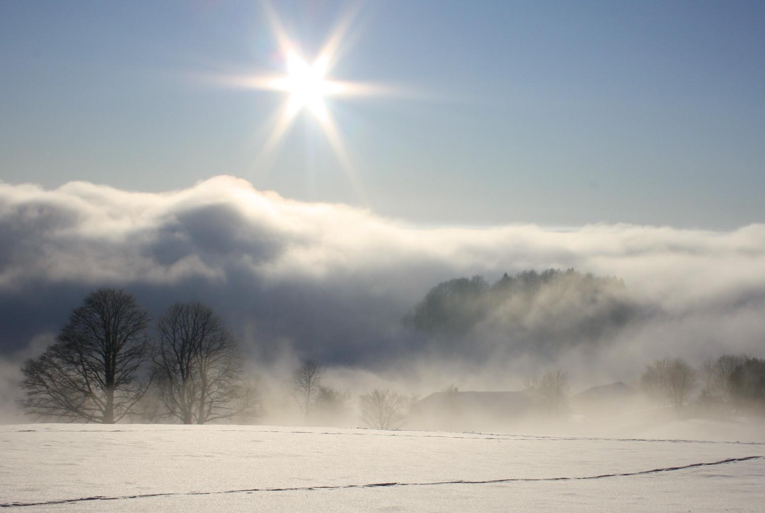 """Winter-Impressionen___""""Von Sonne in den Nebel""""___auf dem Schauinsland"""