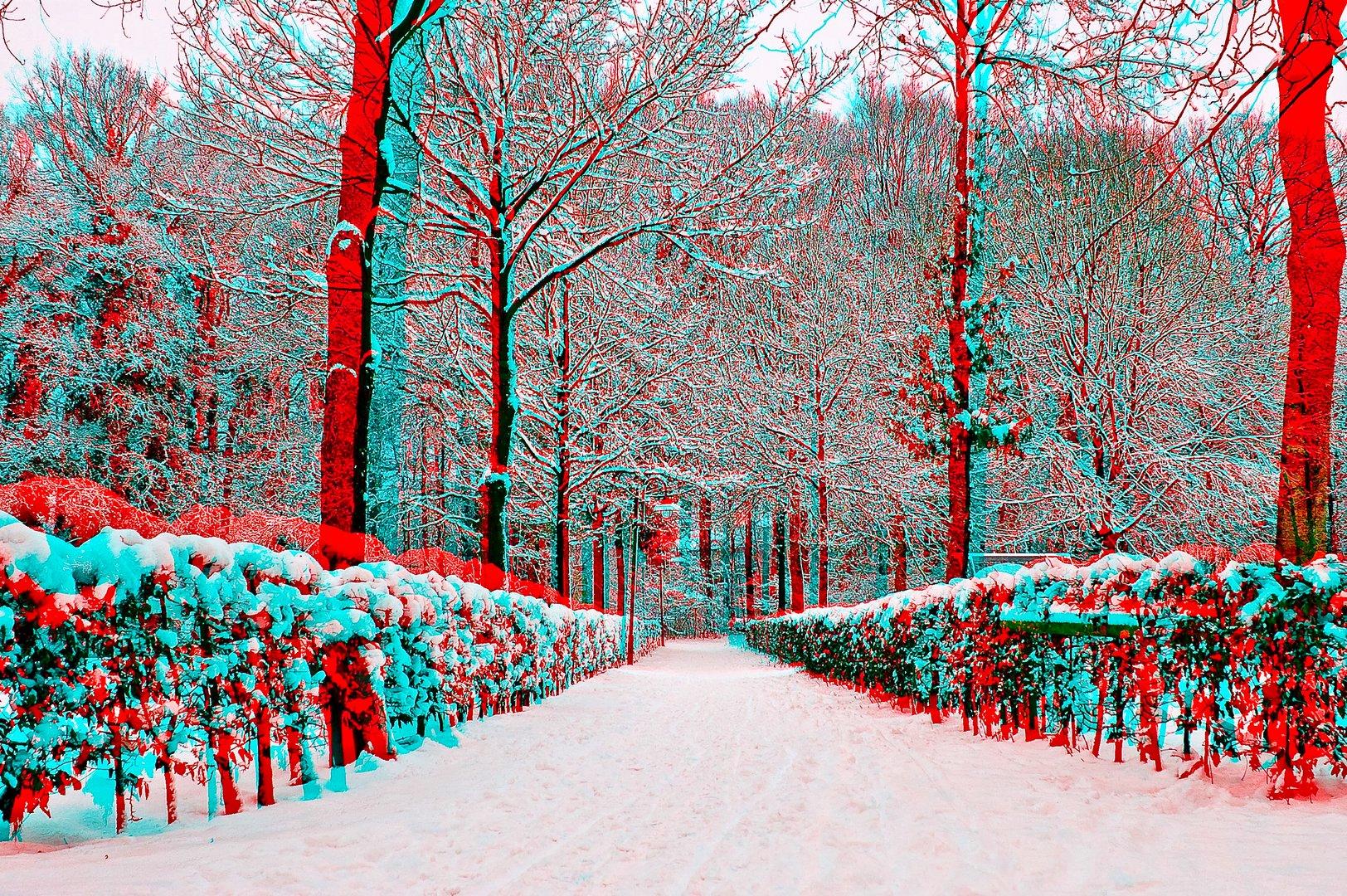 Winter in 3D