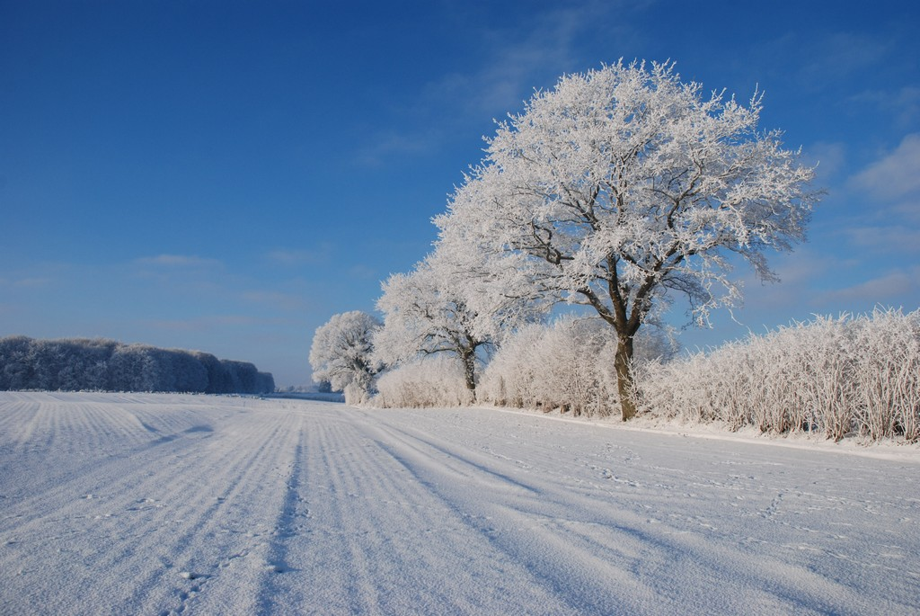 Winter in Angeln