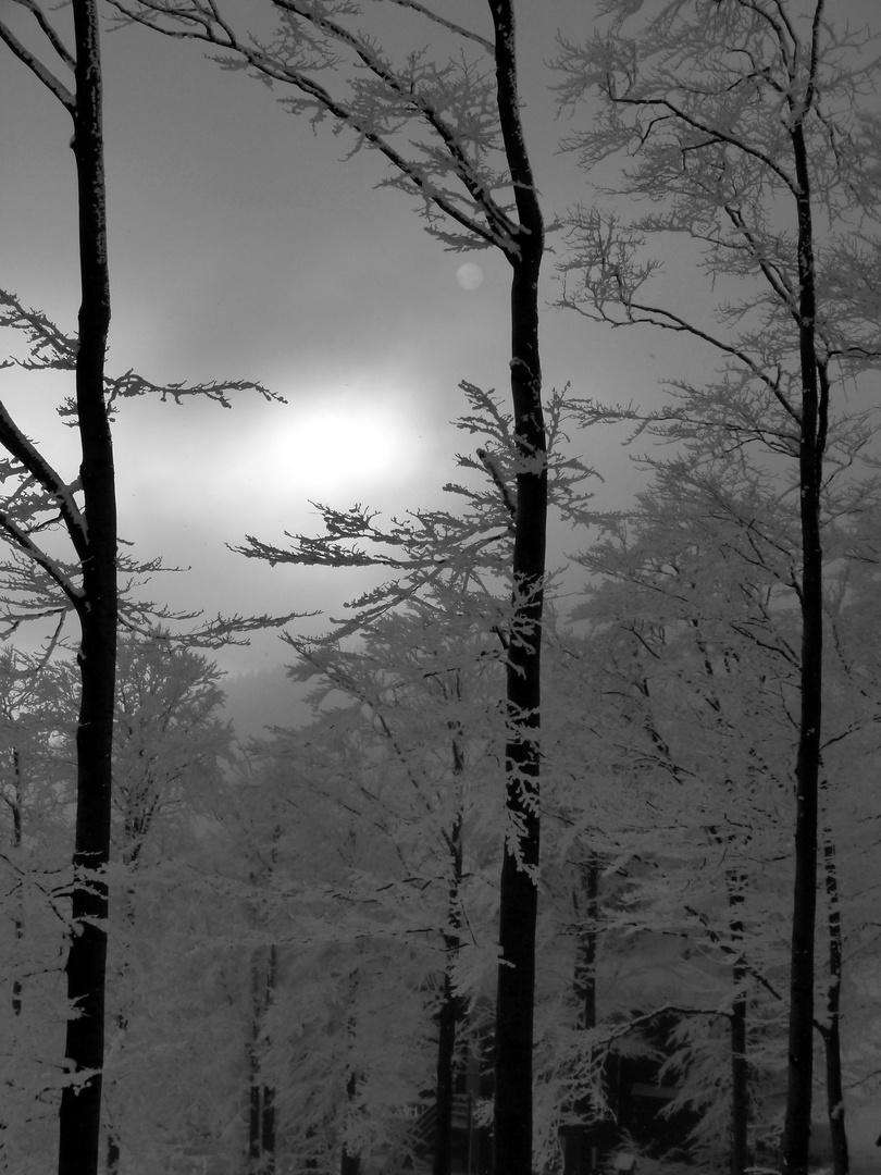 Winter in Beskiden