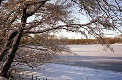 Winter in Braunschweig (2)
