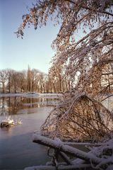 Winter in Braunschweig (3)