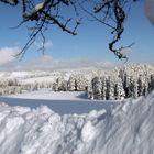 Winter in Breitnau