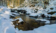 Winter in der Buchberger Leite 2