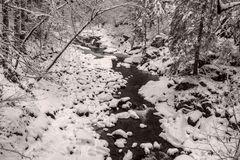 Winter in der Buchberger Leite