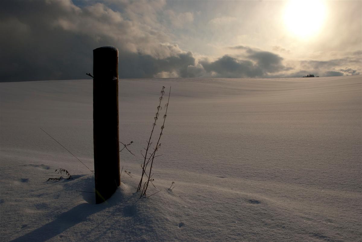 Winter in der Eifel (1)