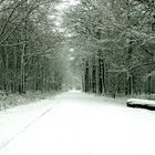 Winter in der Littard bei Rheurdt