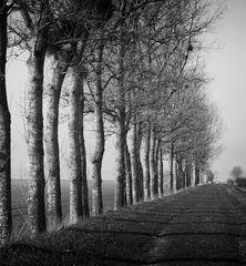 Winter in der Normandie