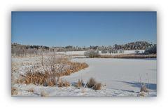 Winter in der Schneckengrüner Heide 4