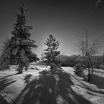 Winter in der Schweiz I