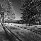 Winter in der Schweiz II