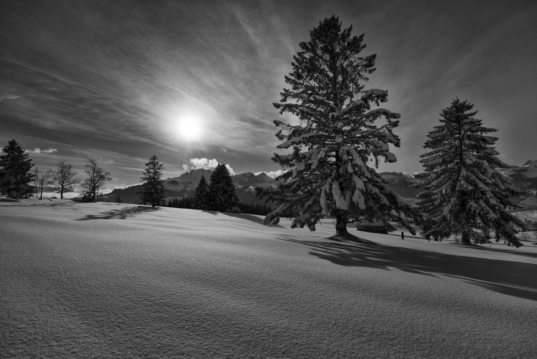 Winter in der Schweiz III