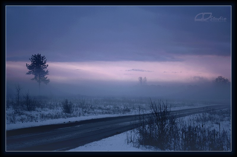 winter in fog...