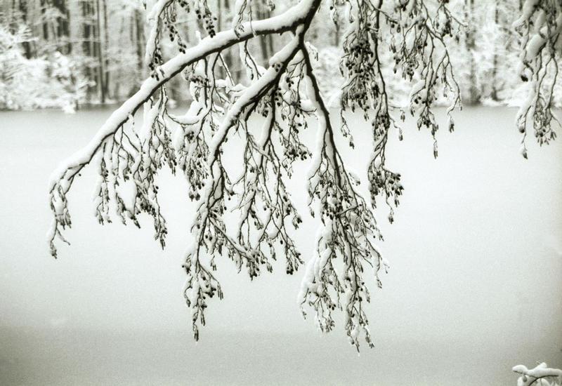 Winter in Hamburg 02