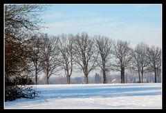 Winter in Hamm 1