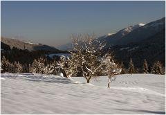 Winter in Kärnten (5)