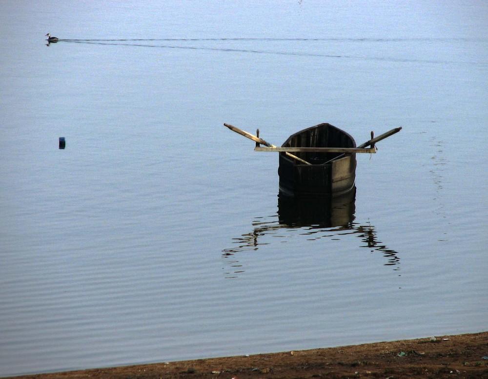 WINTER IN KERKINI LAKE,