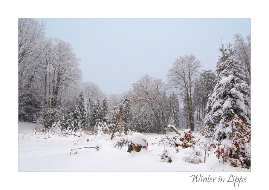 Winter in Lippe