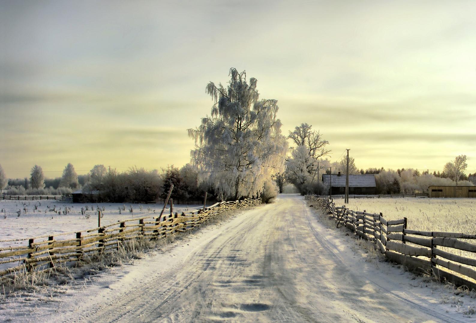 winter in Lithuanian village 2008