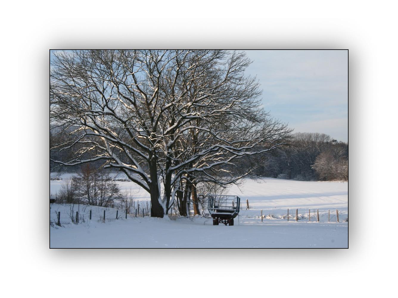 Winter in meinem Dorf 4