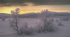Winter in Nordfinnland