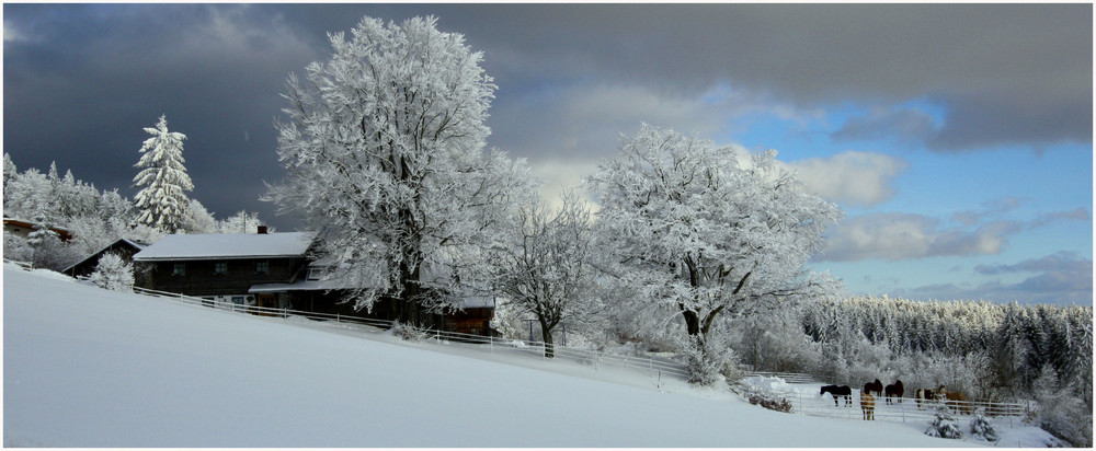 Winter in Obergrainet