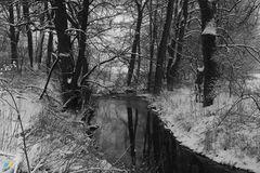 Winter in Ostwestfalen-Lippe