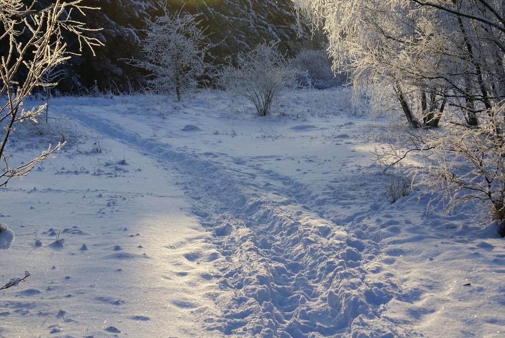 Winter in Petersroda