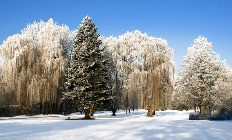 Winter in Rheine