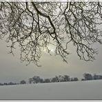 Winter in Rodenbach