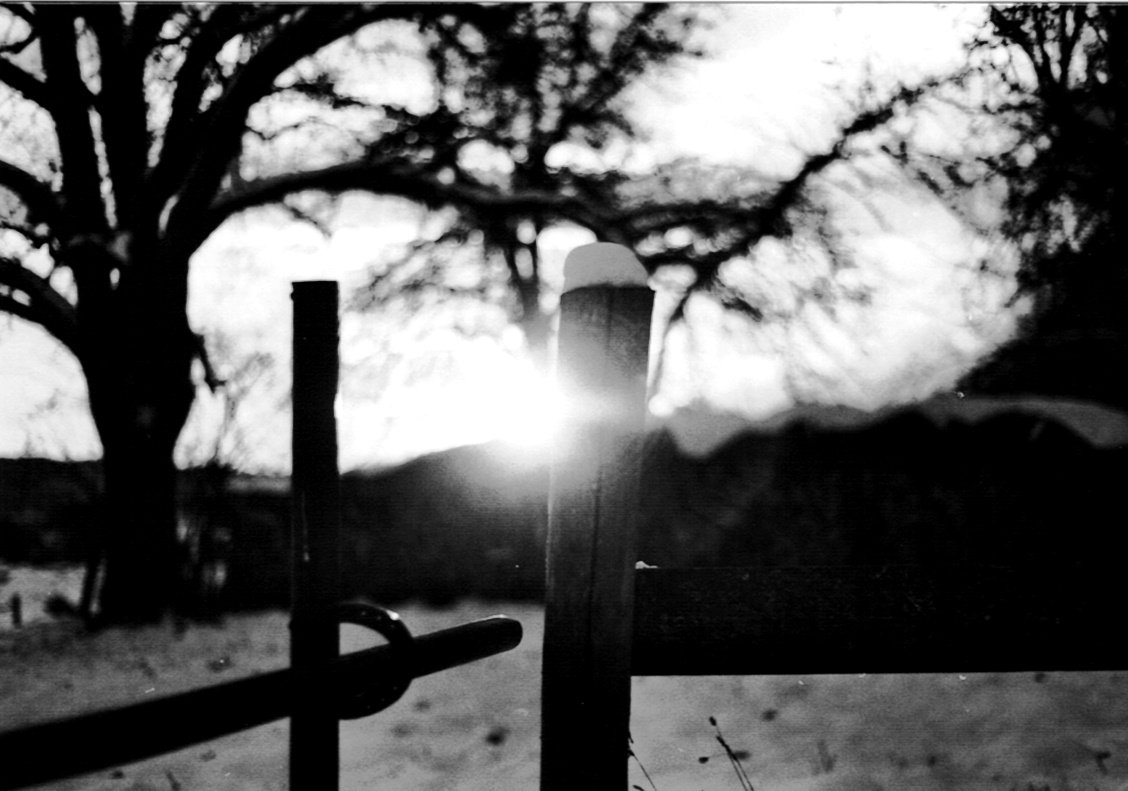 Winter in schwarz-weiß