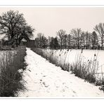 Winter in Sommersdorf