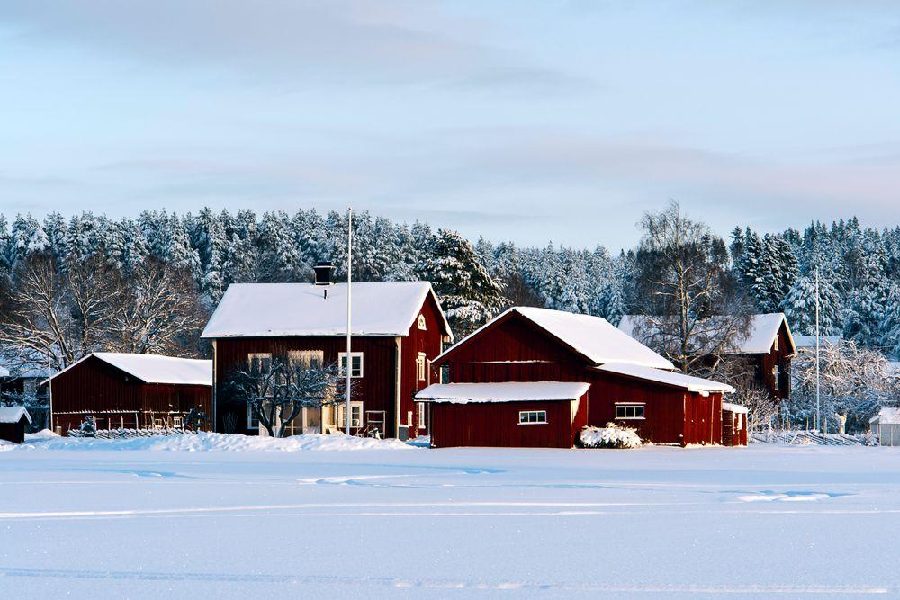 Winter in Sunnemo