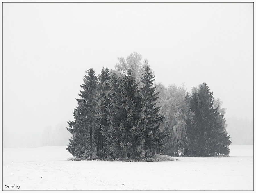 Winter in s/w (3)