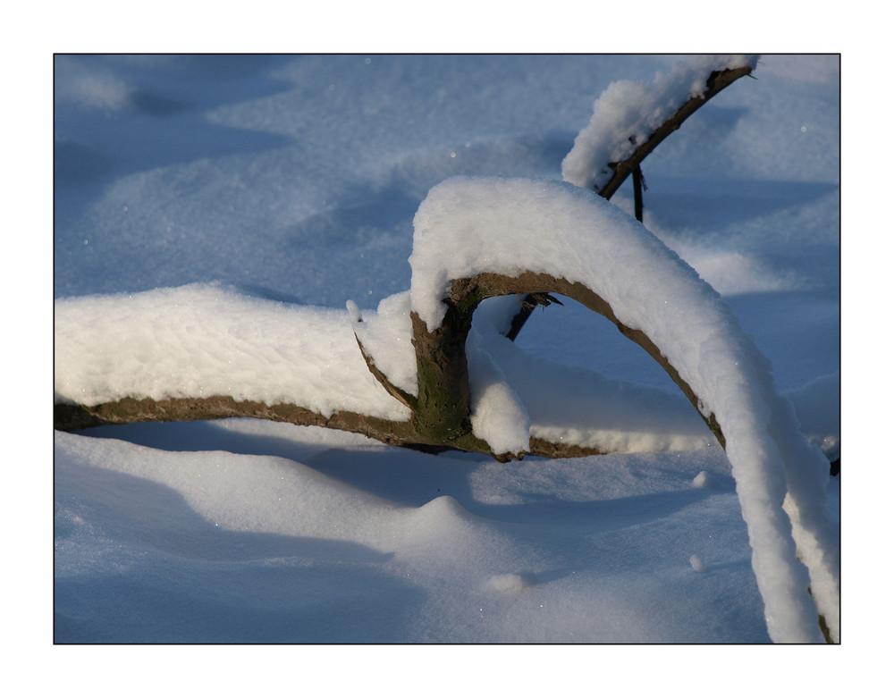 Winter in Teutoburgerwald