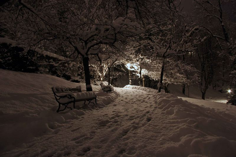 Winter in the City - III