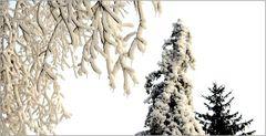 ... Winter in Wien ...