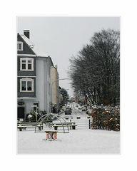 Winter in Wuppertal Hammerstein (01)