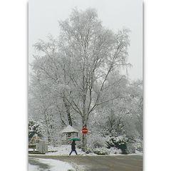 Winter in Wuppertal Hammerstein (04)