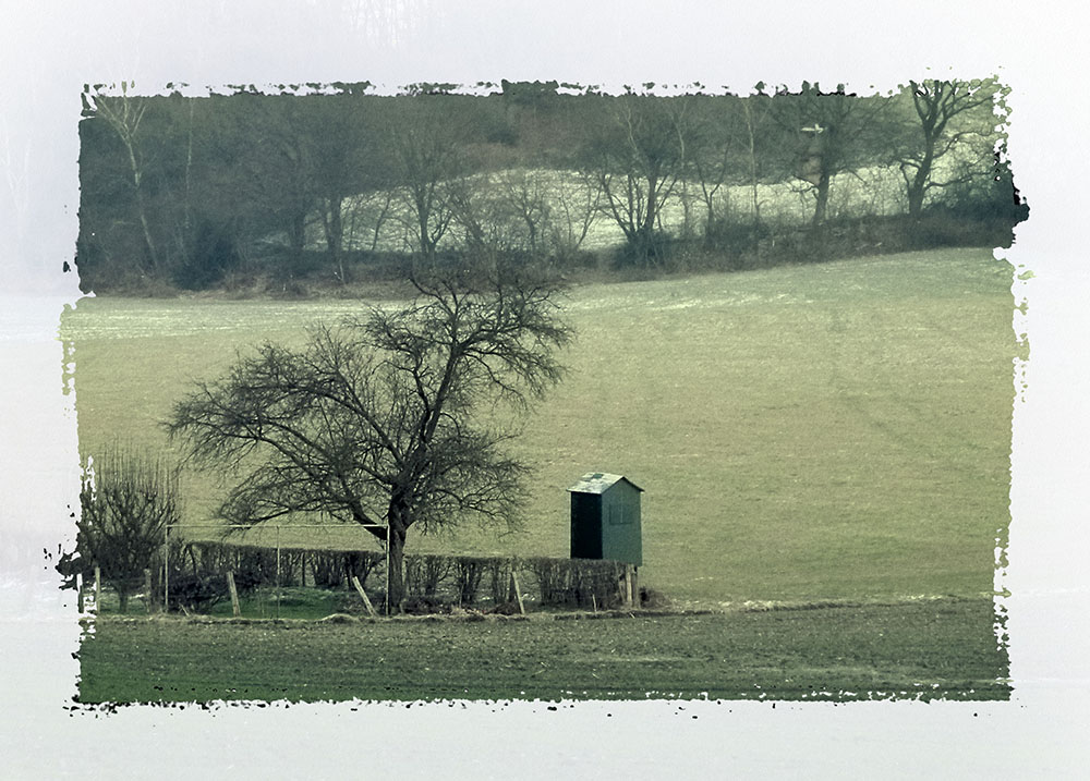 Winter Januar 2011
