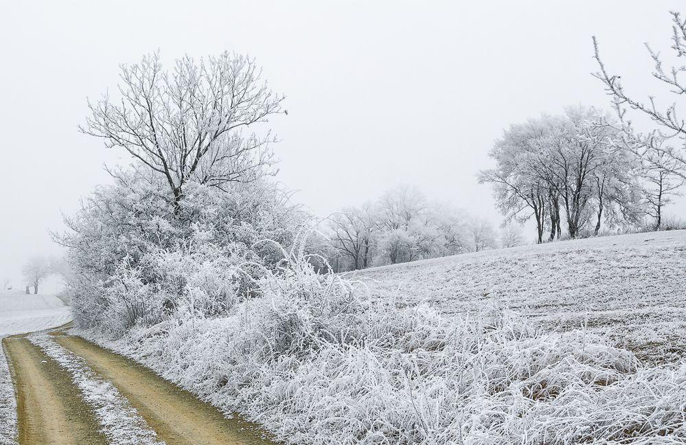 Winter Kälte