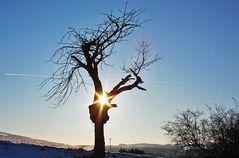 Winter kann auch schön sein...