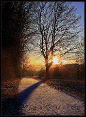 """""""Winter Light"""""""