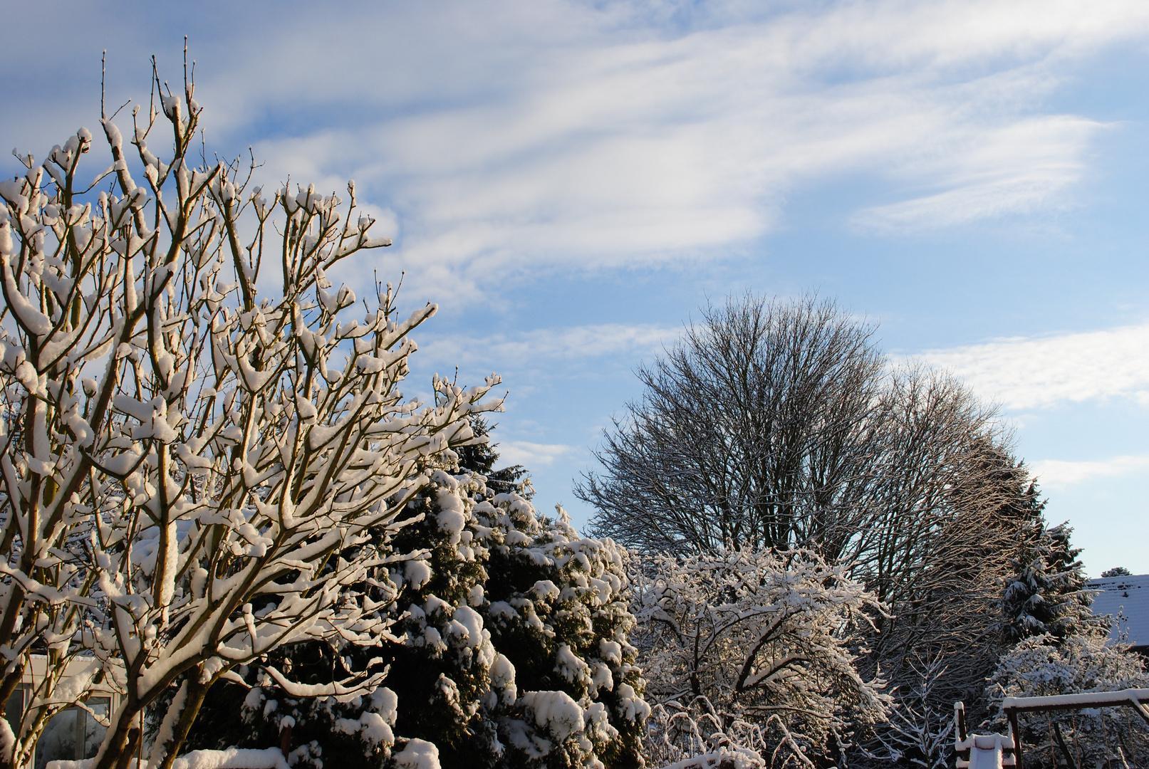 Winter - mal von seiner schönen Seite...