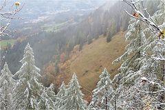 ~ winter meets autumn ~